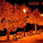 romantic good night images for boyfriend pictures photo pics photo download