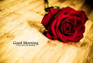 Good Morning Images Photo With Red Rose