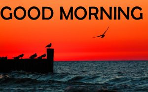 Lover Good Morning Photo Wallpaper Download