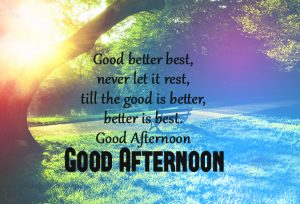 Good Afternoon Images Pictures Download For Facebook
