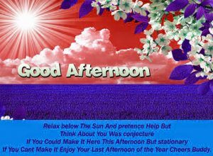 Good Afternoon Images Photo For Whatsaap In HD