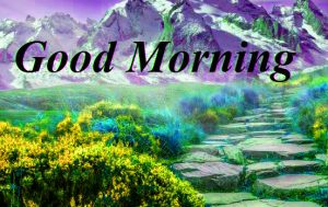 gd mrng Images Photo Pics Free Download
