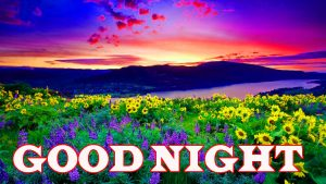 New good night photos Wallpaper Photo Pics HD Download for Facebook
