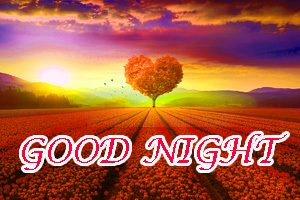 Gn Love Wallpaper Photo Images Pictures Free HD