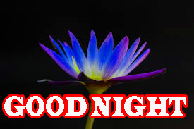 Newgood night Wallpaper Photo Pictures Download
