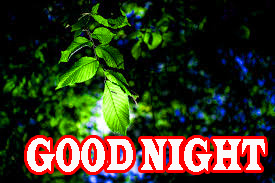 New good night Images Wallpaper Pictures Pics Download