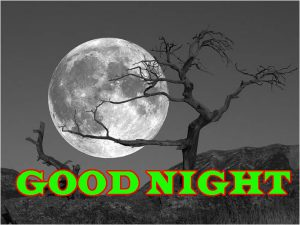Newgood night Wallpaper Pictures HD Download