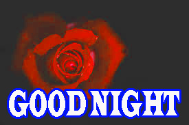 New good night Images Photo pictures With Rose