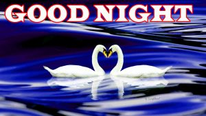 New good night Images Photo pics Download