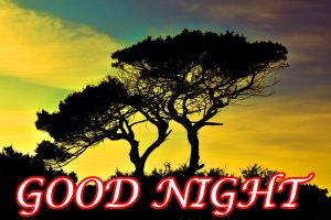 Good Night Wallpaper Pictures Images Photo HD