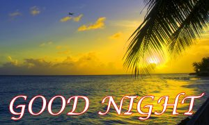 Latest Gud Night images Wallpaper Photo Pictures Free Download
