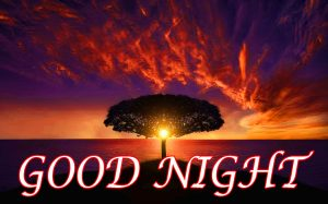 Latest Gud Night Photo Wallpaper Pictures Images Free HD