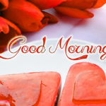 Latest cute good morning images wallpaper photo pictures free HD