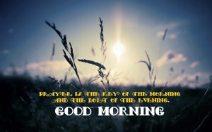 Quotes good morning images photo wallpaper download