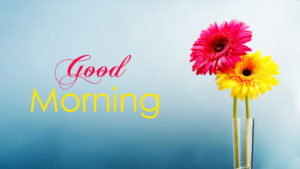 new good morning images wallpaper pictures pics download