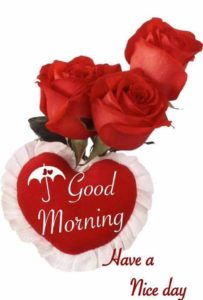 love good morning images wallpaper photo pictures free download