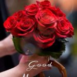 Red rose good morning images photo pics free hd