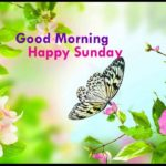 best good morning happy Sunday photo wallpaper pics hd download