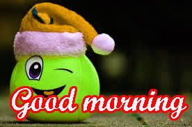 very best funny good morning images photo wallpaper pics download