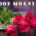 flower good morning images for love pictures photo hd