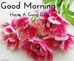 very nice good morning images wallpaper pictures pics for whatsapp