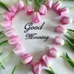 nice latest good morning images photo wallpaper pics download