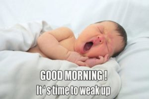 funny good morning images wallpaper pictures photo pics free hd download