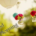 very beautiful happy good morning images photo wallpaper pictures hd