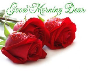 love good morning images pictures wallpaper download