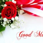 beautiful good morning images pictures photo download