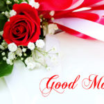 Red rose good morning images pictures photo free hd