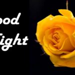 new love good night images wallpaper pictures photo pics download