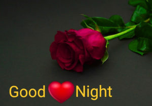 Best red rose good night wallpaper images pictures photo pics Download