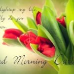 love good morning images photo wallpaper pictures free hd download