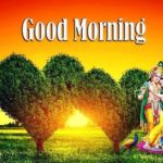 love good morning images photo wallpaper pictures for whatsapp