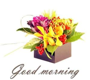 attractive-pic-of-good-morning-flowers-500×445