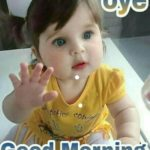 funny good morning images wallpaper pictures photo download
