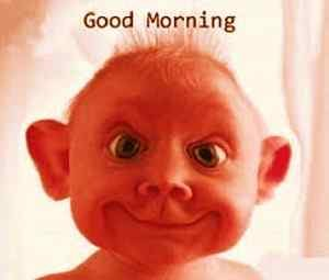 funny good morning images photo pictures wallpaper free download