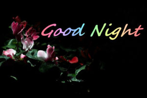 Good Night images for girlfriend photo pictures wallpaper pics free download