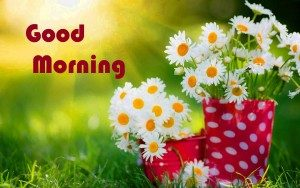 new love good morning images photo wallpaper free download
