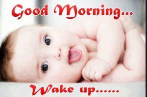 funny good morning images wallpaper photo pictures free hd download