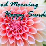 love good morning happy Sunday images wallpaper pictures hd