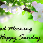 very best good morning happy Sunday images wallpaper photo free hd