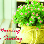 new love good morning happy Sunday pictures photo hd download