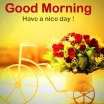 good morning images photo wallpaper pictures free hd download