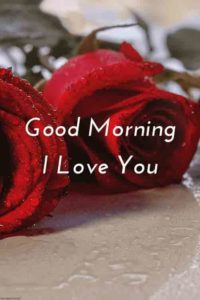 Love Good Morning Images For Love Pictures Wallpaper Hd Download