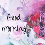 nice good morning images wallpaper pictures pics download