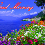 nature good morning images photo wallpaper free download