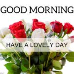 flower good morning images pictures photo hd
