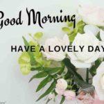 good morning images wallpaper photo pictures free hd download
